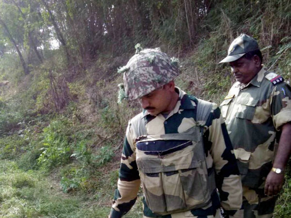 Pakistani intruder handed over by BSF