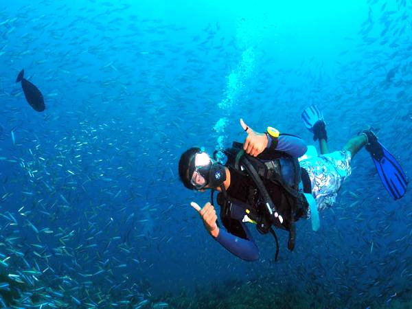 Diving in Andaman waters
