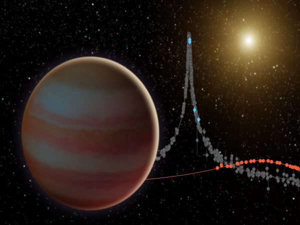 Record-breaking brown dwarf is 'purest' and most massive