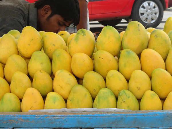 India set to export mangoes to Australian market this season