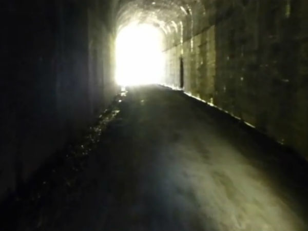 BSF unearths tunnel used to smuggle cattle to Bangladesh
