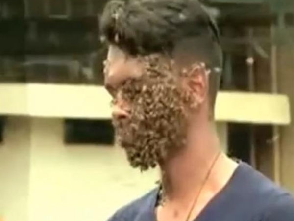 See it to believe it: A young Kerala man has 60,000 bees on his face