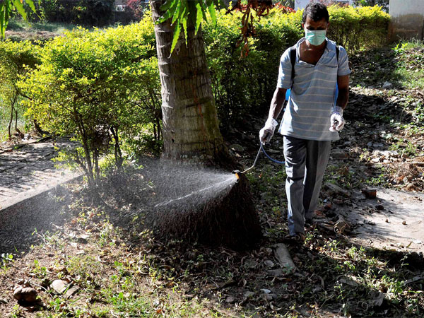 A worker busy at anti-Dengue spraying during a program. PTI file photo
