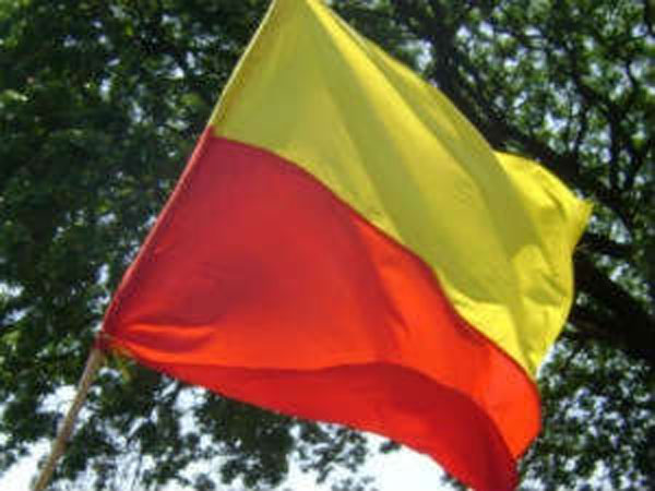 "Image result for karnataka flag"""