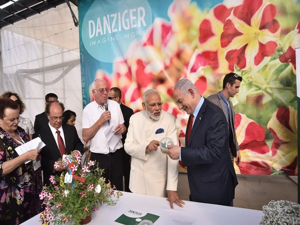 Modi at Danziger Flower Farm