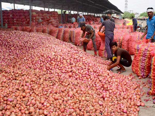 File photo of an onion market