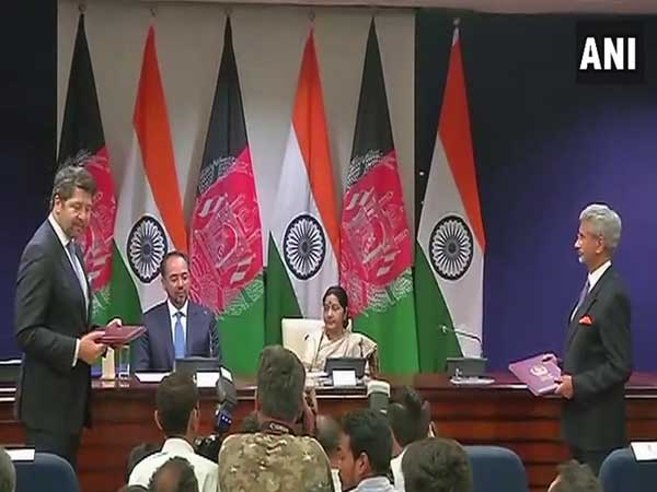 Sushma Swaraj and Salahuddin Rabbani