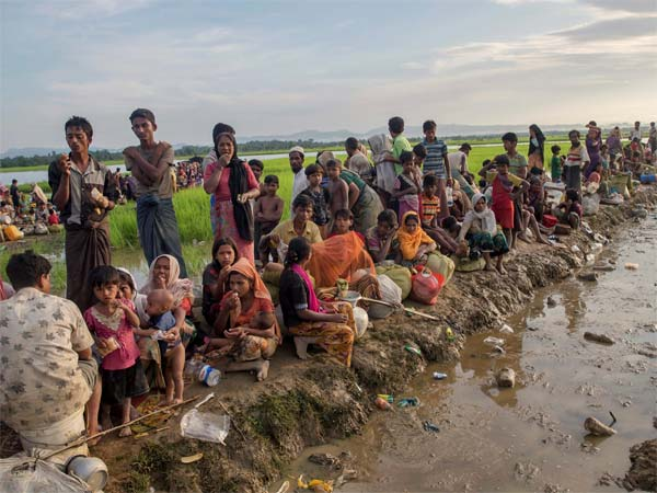 The Rohingya hunt continues: Lashkar makes fresh bid at terror recruitment