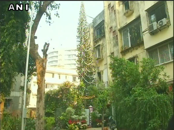 Where To Spot India's 'tallest' Christmas Tree? Visit This