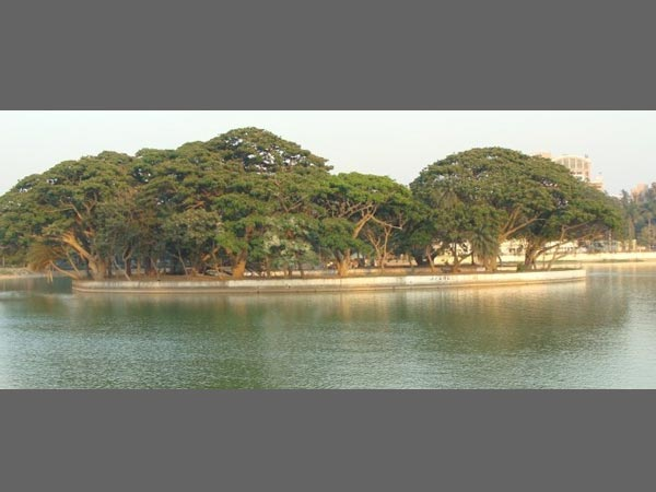 Bengaluru: Not a single lake whose water is fit for human consumption says study