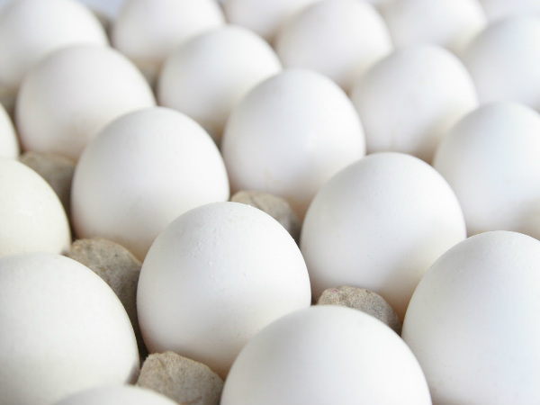 Over 200 million eggs recalled in US because of salmonella fears