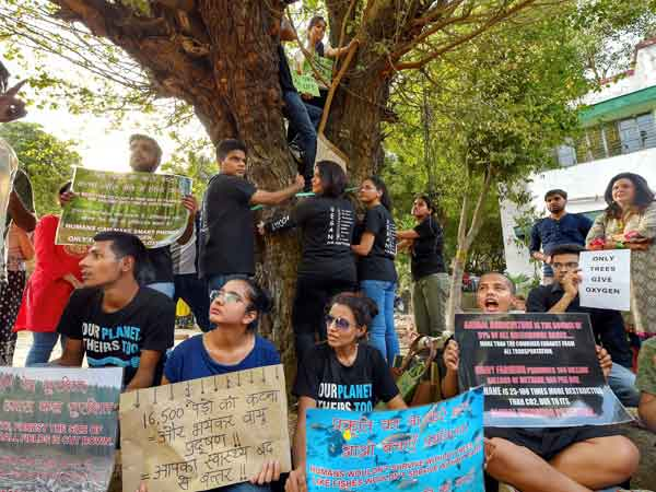 Delhi's own 'chipko' movement: Protest to protect 14,000 trees