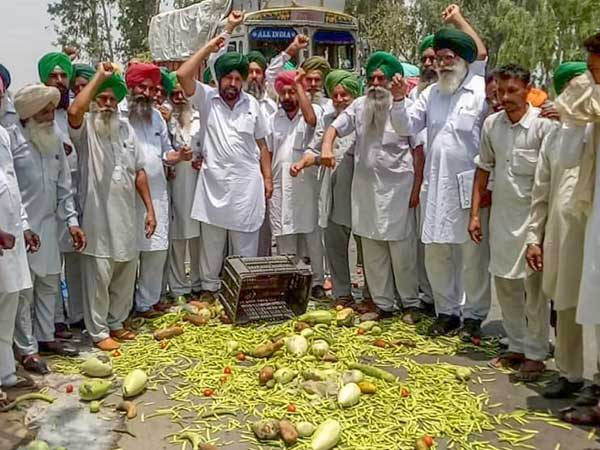 As farmer's agitation intensifies, vegetable prices double