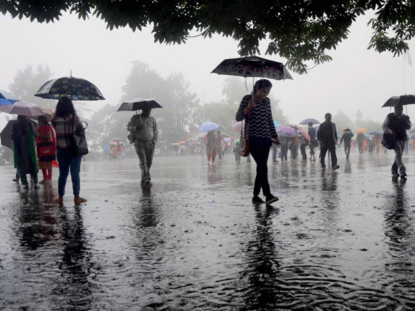 Monsoon update: Extremely heavy falls very likely at isolated places over Gujarat Region, Vidarbha (Representative image)
