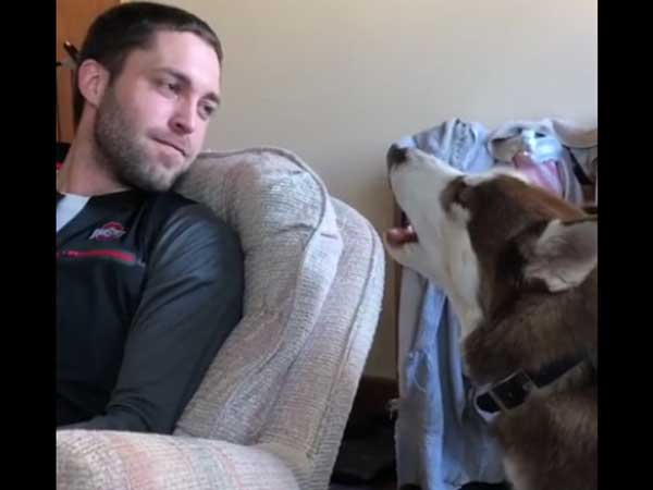 Here's is an excellent howling contest going on between a dog and a man