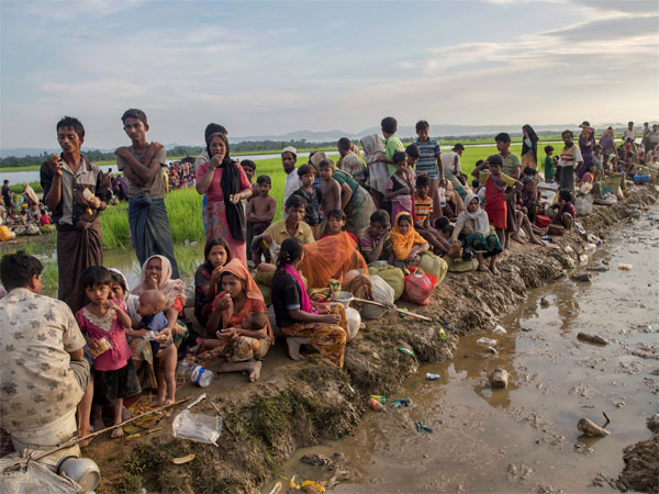 Trafficking, terror and now hawala: India sits on a ticking time bomb of 40,000 Rohingya Muslims