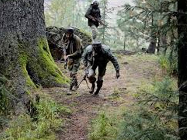 J&K: 3 terrorists arrested while infiltrating border in Kupwara