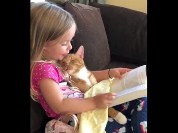 This furry pet needs a bedtime story to go to sleep!
