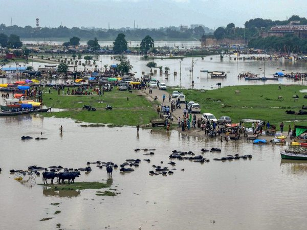 Submerged area in Allahabad
