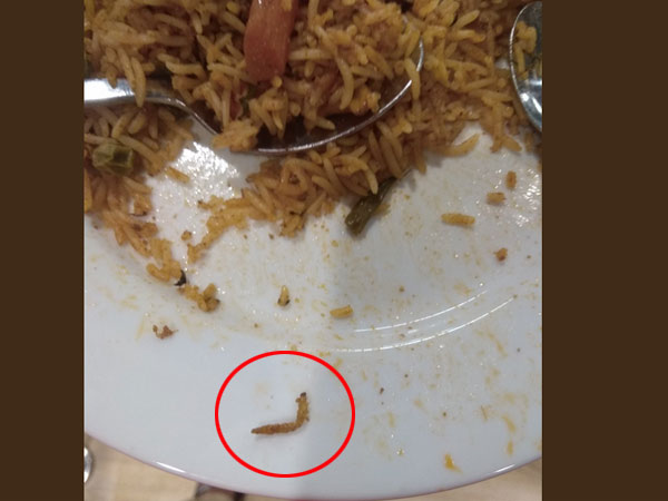 Worm found in biriyani at IKEA Hyderabad, firm to cough up Rs 11,500 as fine