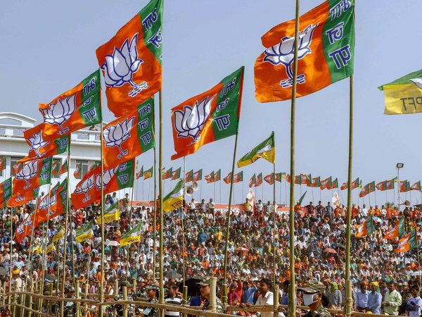 BJP to target 315 seats in Lok Sabha elections