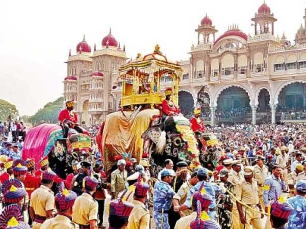 The Elephants of Dasara, a sight to behold!