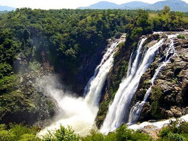 Bodies of TN couple found near Shivanasamudra Falls in Ktaka