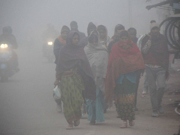 Weather forecast for Dec 21: Cold wave to continue in Delhi-NCR