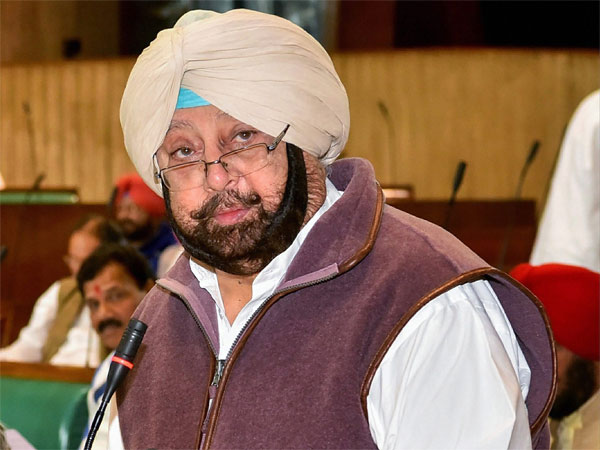 'Should get 82 of them': Amarinder Singh calls for tit-for-tat in wake of Pulwama attack