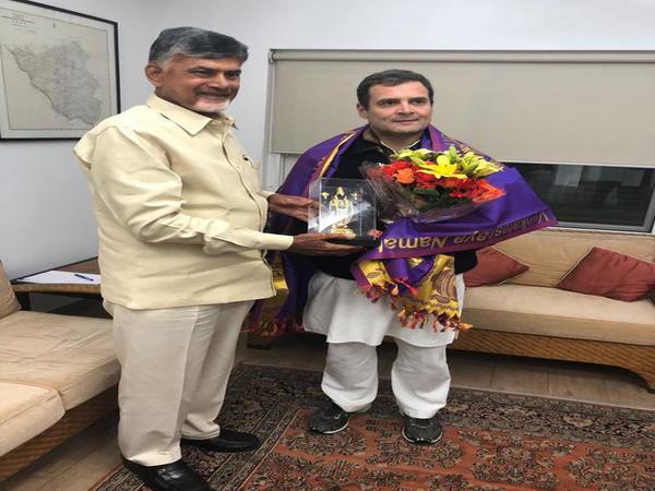 Chandrababu Naidu meets Rahul in Delhi to push mission united Opposition