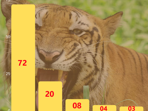 In numbers: Tiger deaths in India
