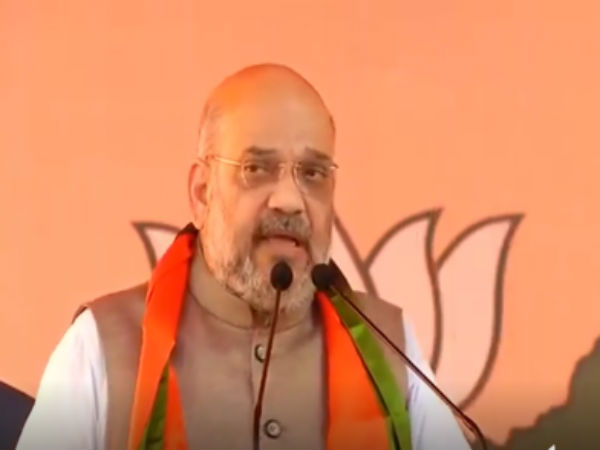 In Andhra, Amit Shah accuses Cong of using Pulwama attack for political interests