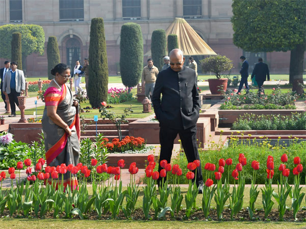 Preview of the Mughal Gardens