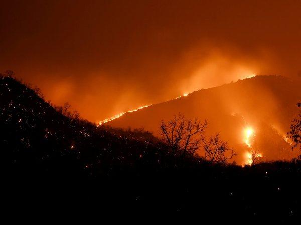 Karnataka: Major fire in Bandipur Tiger Reserve, hundreds of acres destroyed