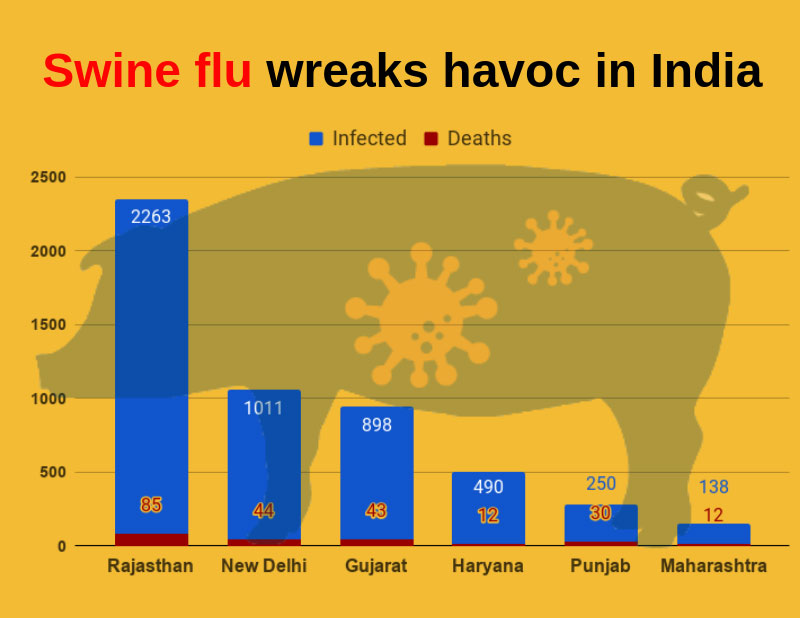 Swine flu wreaks havoc in India: 226 deaths reported so far in 2019