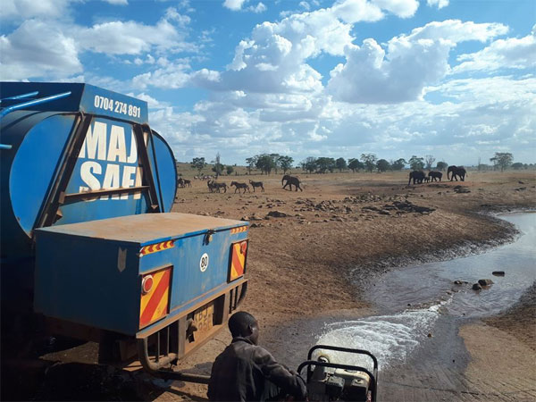 Kenya man supplies gallons of water to drought-stricken animals, earns praise