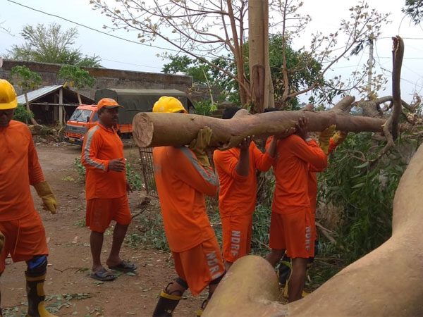 Severe cyclonic storm 'Fani' hits Odisha; Relief and rescue efforts in full swing