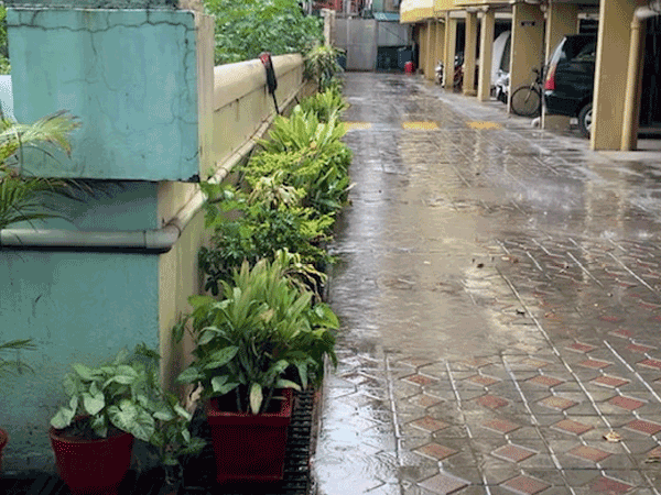 Strong winds, thundershowers lash parts of city in Bengaluru