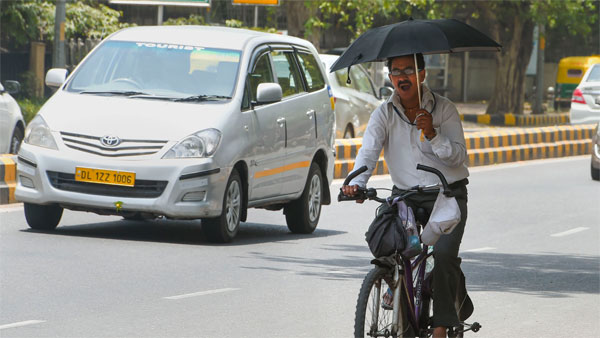 A man uses an umbrella to protect himself from the scorching heat as he rides a bicycle during a hot summer day in New Delhi