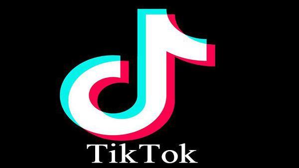 Discourage use of Tik Tok, PUBG: Goa education department to schools