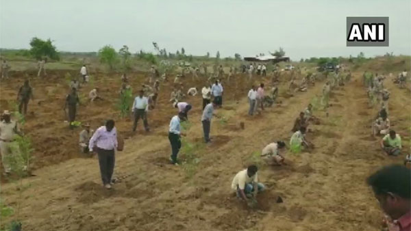 Unique protest: Telangana forest officials launch plantation drive to protest against TRS attack