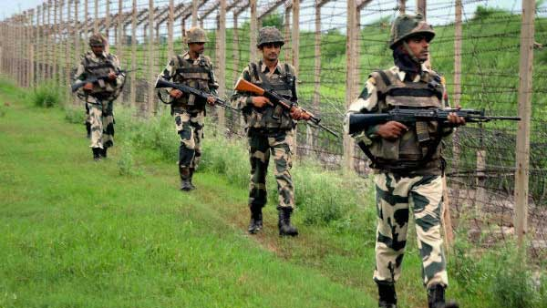 25 Bangladeshi cattle smugglers attack BSF jawan, he fights back valiantly but loses arm