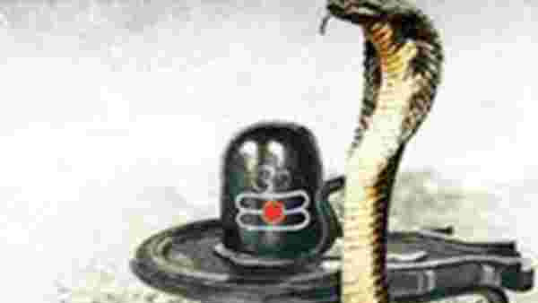 Nag Panchami 2019: Best whatsapp status, messages and quotes to send