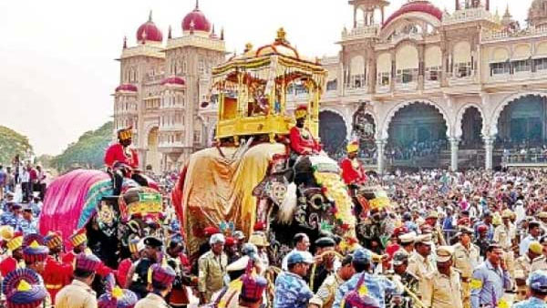 From rogue elephant to Dasara show stopper: Arjuna knows how to throw his weight around