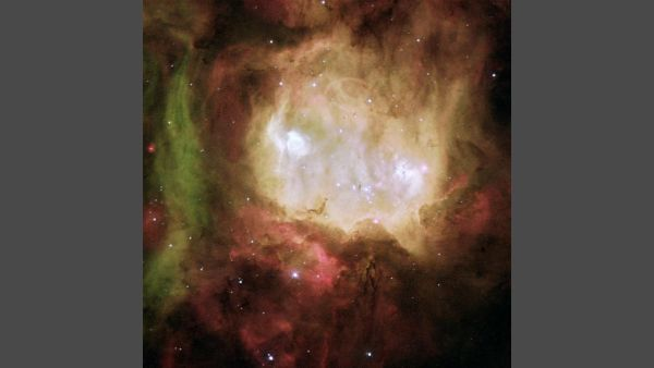 The Ghost Head Nebula