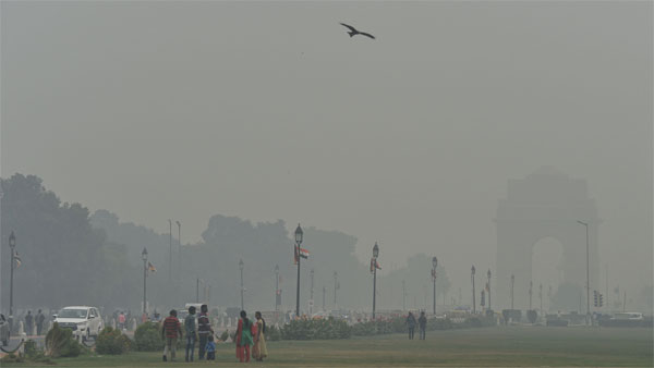 Parl panel asks for final report to curb pollution woes