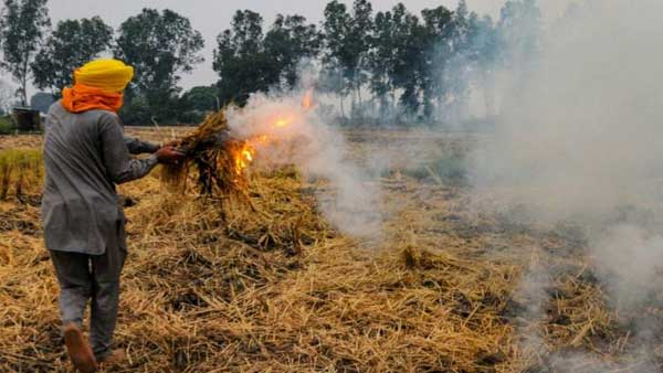 Stop stubble burning