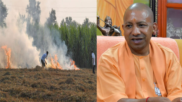 UP CM Yogi Adityanath issues strict direction on stubble burning