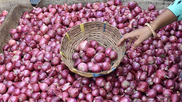 Onions price may rise more, as major Import hub Turkey halts on export