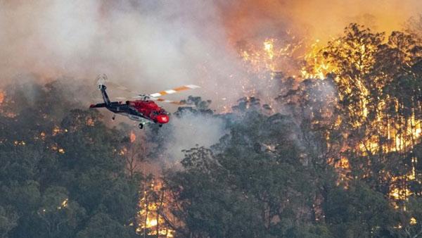 Australia: Bushfire catastrophe in pictures